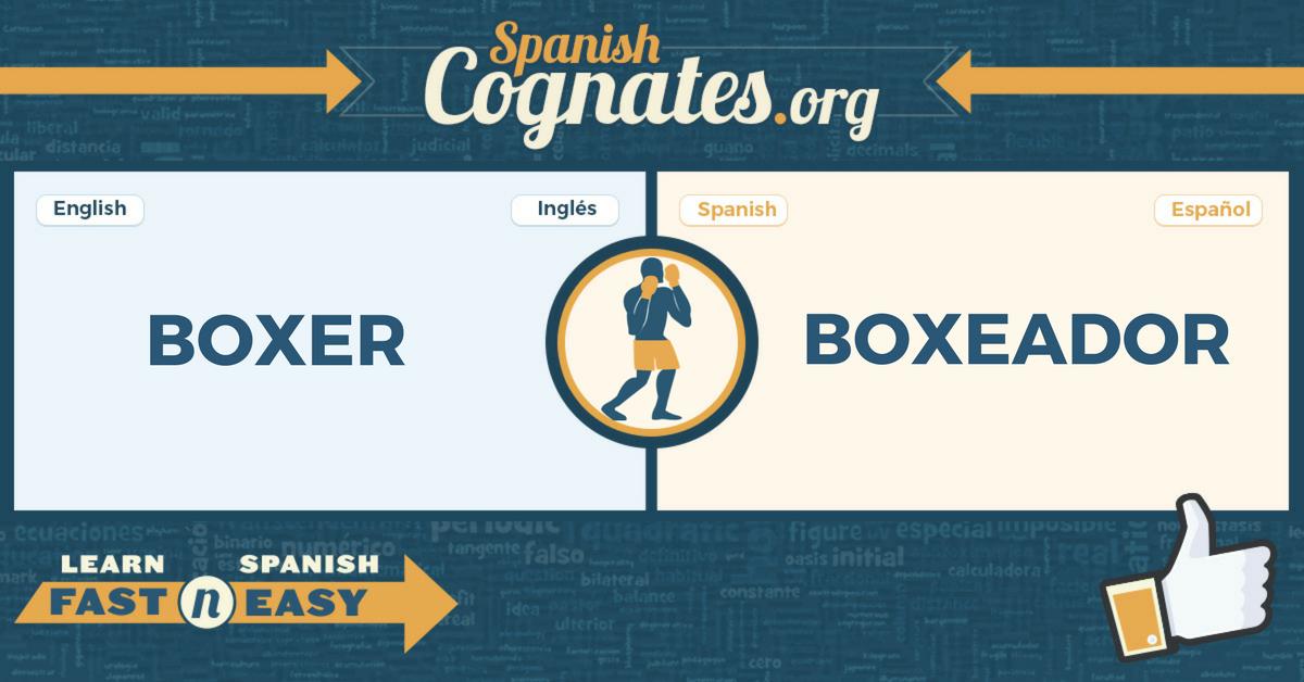 Spanish Cognates: boxer-boxeador